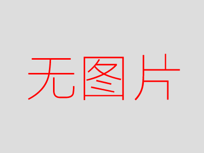 宝沃汽车 宝沃BX7 2016款 Concept